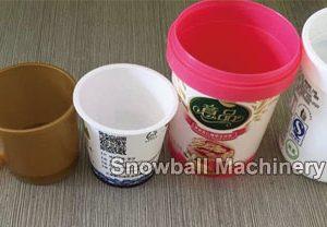 Envase Plástico de Helado de Diferente Volumen